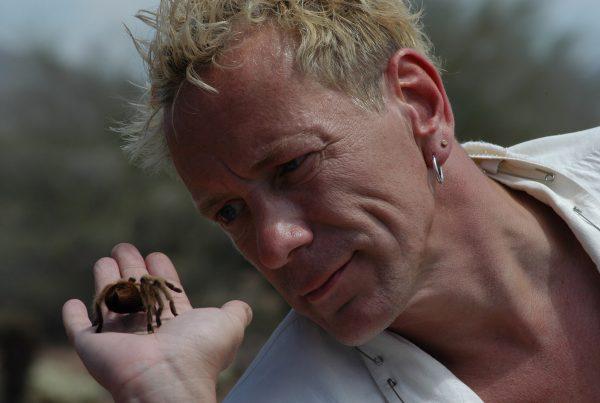 John Lydon's Megabugs